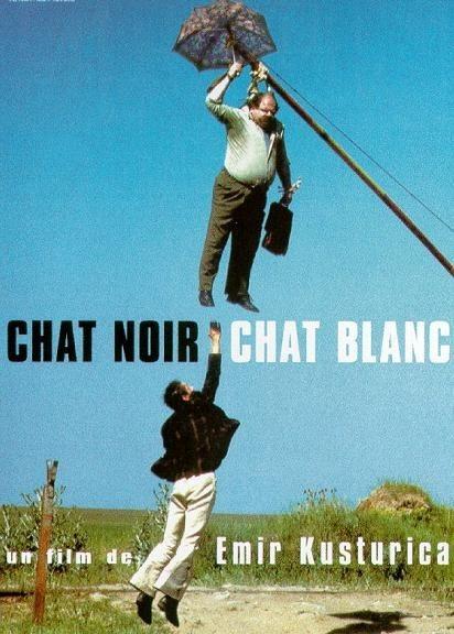 Plagát k filmu Čierna mačka, biely kocúr (FR)